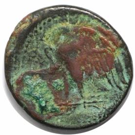 AE 27 285-246 v. Chr revers